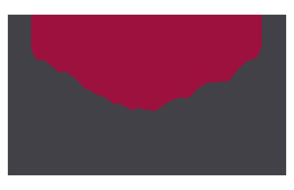 Logo afs small